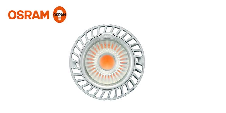 欧司朗LED斗胆杯COIN 111